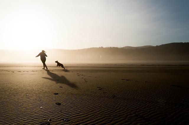 Človek beží so psom.jpg